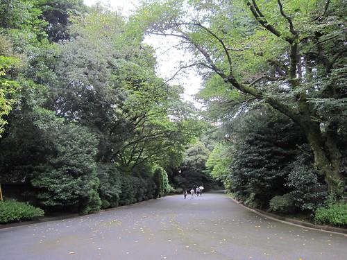 ⑪★会場から正門への道 by Poran111