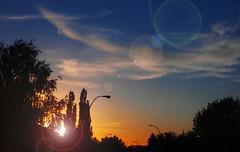 Helios Calls It A Night (LostMyHeadache: Absolutely Free *) Tags: street trees sunset sky sun clouds nikon dusk horizon lamps davidsmith calgaryalbertacanada