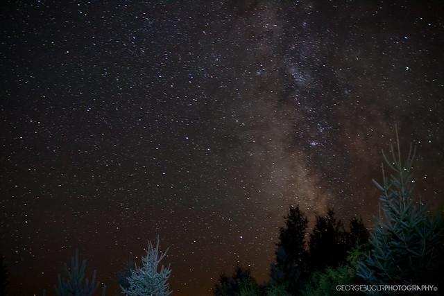 IMAGE: http://farm7.static.flickr.com/6085/6087109753_cac3c69e3c_z.jpg