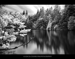 Infrared tude - 2011 - #3 - Plitvika Jezera (Luca Cesari Photography) Tags: trip lake holiday canon landscape lago waterfall croatia croazia infared hrvatska plitvice cascata hoyar72 plitvikajezera lucaeos infarosso