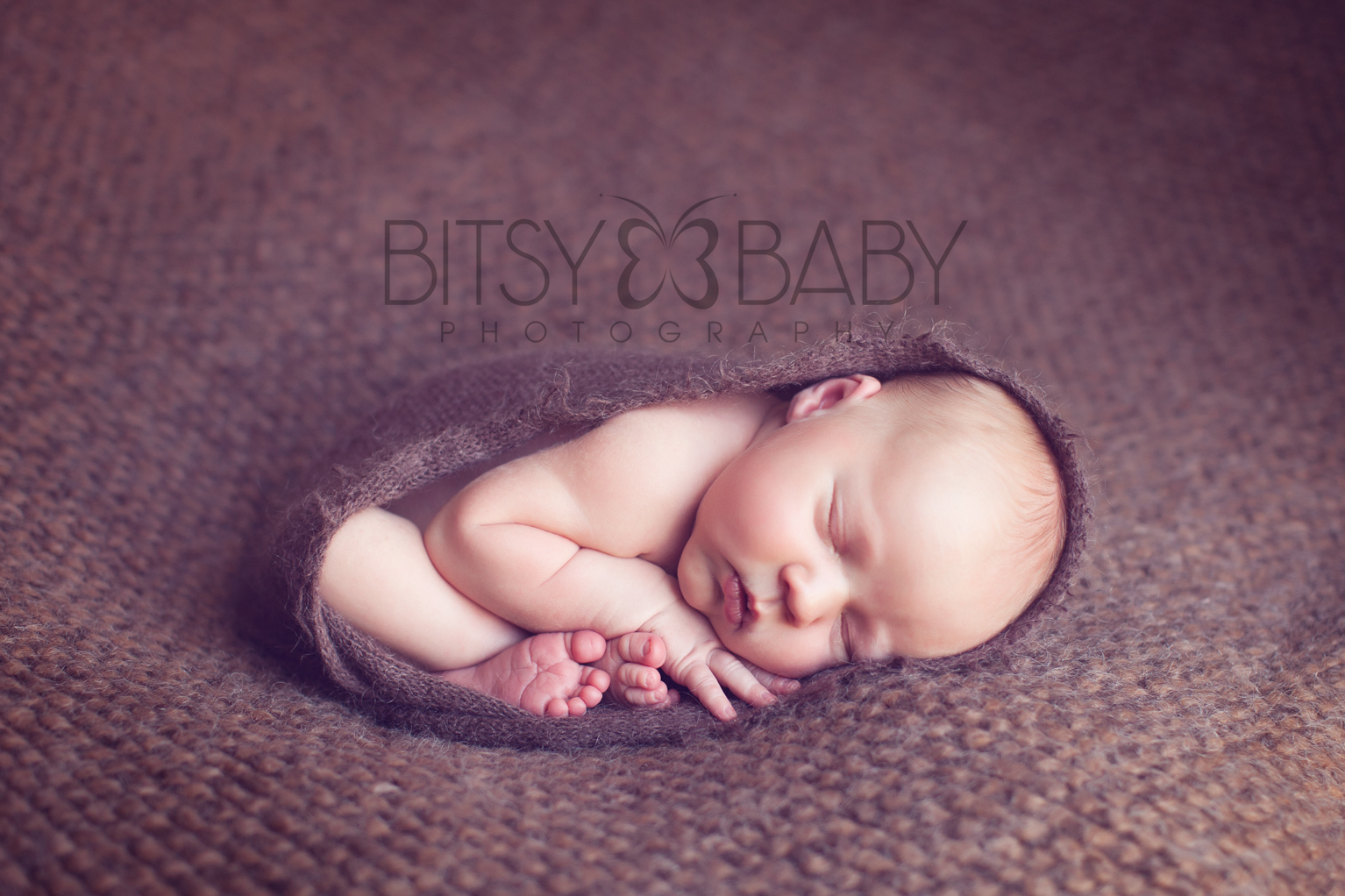newborn photographers_curled2