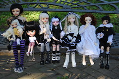 The whole group! (Purple  Enma) Tags: bjd blythe fairyland dollmore souldoll dollzone planetdoll