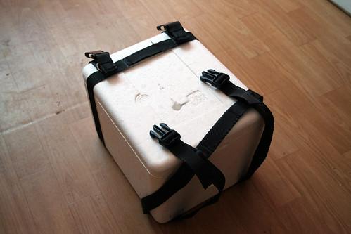 czANSO straps