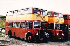 LTA 994,Bristol,KS5G/ECW, JCS 5 Guy Arab, Newton's Coaches Dingwall (ronnie.cameron2009) Tags: travel buses scotland coach transport pass scottish ticket passengers journey perth passenger publictransport coaches newton journeys inverness doubledecker psv pcv newtons ullapool decker travelcard dingwall nigg ecw scottishhighlands rossshire bustravel highlandsofscotland halfcab coachjourney coachtravel studentcard rosscromarty westernsmt guyarab countytown passengertransport newtonstravel newtonscoaches fastclass passengertravel bristolks5g newtontravel newtonofdingwall newtonsdingwall eastercoachworks jcs5 smnewton passengerspassengertravelpassengertransport