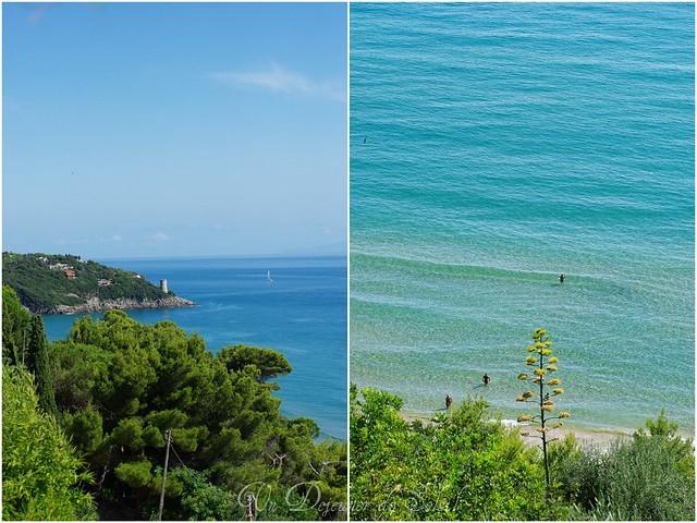 Mediterranean...