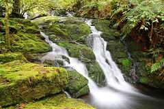 Waterfall at Gloucester Tops, Barrington Tops National Park, NSW, Australia (macca_1985) Tags: longexposure chris green waterfall nationalpark rainforest australia unesco gloucester newsouthwales tops mclean worldheritage barrington nothofagus hunterregion sigma1770f2845 gloucestertops barringtontopsnationalpark gloucestertourism
