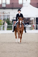 IMG_0981 (White Bear) Tags: horses horse animals sport russia equestrian artem dressage        makeev      equene