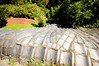 養老天命反転地 The Site of Reversible Destiny - Yoro Park (nacc1) Tags: madeline arakawa gins shusaku 荒川修作