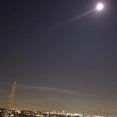 月が明るい。もうすぐ中秋か~。美味しい月餅食べたいな。