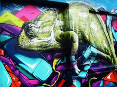 liverpool street art (Tony Worrall Foto) Tags: street city uk england streetart color art wall liverpool mammal graffiti photo artwork mural artist colours northwest image display stock spray beast british colourful chameleon lizards mersey merseyside distinctive sprayed scouse chamaeleonidae 2011tonyworrall tonyworral graffitimuralarchive