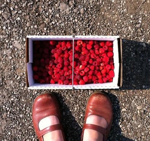 raspberry feet