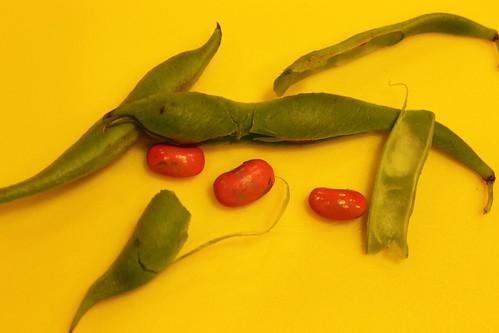 Peas - or beans? (54)