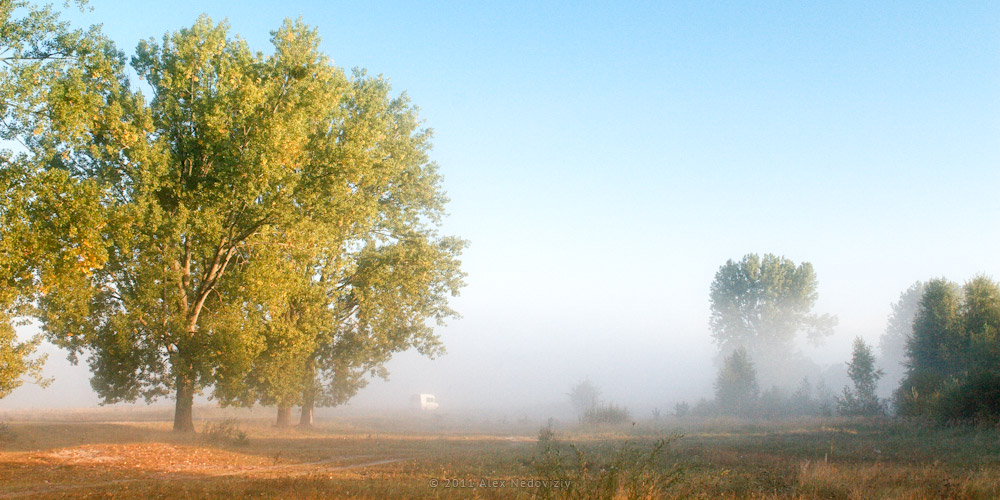 Бегущий в тумане © 2011 Alex Nedoviziy