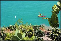 vieste II (GrandecapoEstiCazzi) Tags: sea summer italy verde mediterraneo italia mare estate blu happiness traveling canoeing puglia vieste gargano mediterrean fichi viaggiare