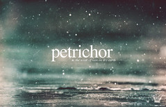 Petrichor 195/365 (carE.) Tags: