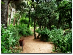 Efecto Orton (Nati C.) Tags: naturaleza bcn paisaje catalunya efectoorton cruzadatcnica parquedellaberintodehorta