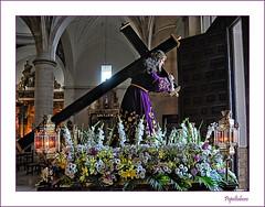 El Toboso: fiesta del Dulce Nombre de Jesús, 2011; 18