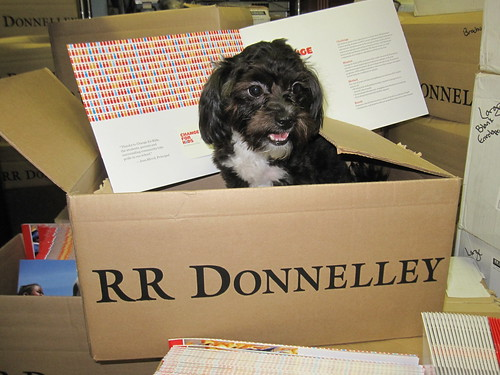 Kona in RR Donnelley Boxes