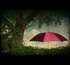 Tree & Umbrella (Photofreaks) Tags: tree art nature umbrella photoshop grunge textures composing ishtexture adengs wwwphotofreaksws