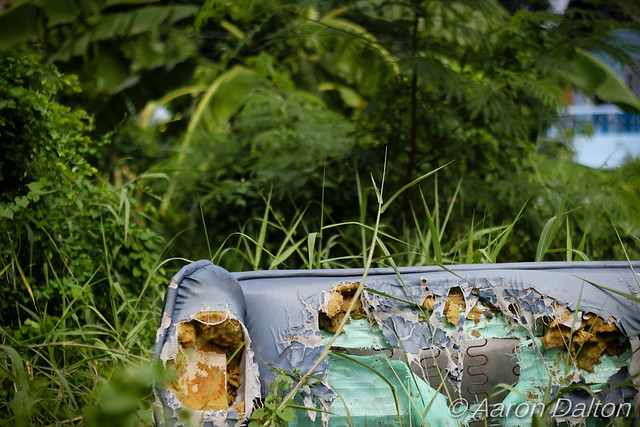 Jungle Couch