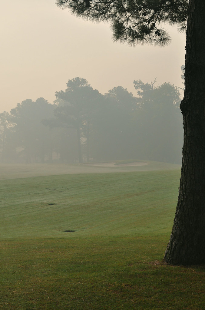 Swamp Smoke (4)