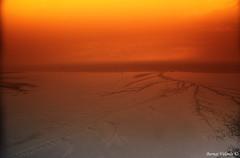 Listening to The Silence - Escuchando El Silencio (Bernai Velarde-Light Seeker) Tags: panama bernaivelarde manglares mangroves sea mar ocean oceano costa del este y humedales republic republica central centro america country pais republicofpanama republicadepanama bernai velarde © cokin filter cental centralamerica centroamerica