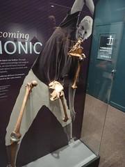 Bionic parts (nangeloni47) Tags: skeleton washingtondc smithsonian replacement artificial human bone hip femur knee joint forensics smithsonianinstitution nationalmuseumofnaturalhistory humerus