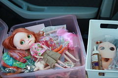Doll Road trip. My front seat.