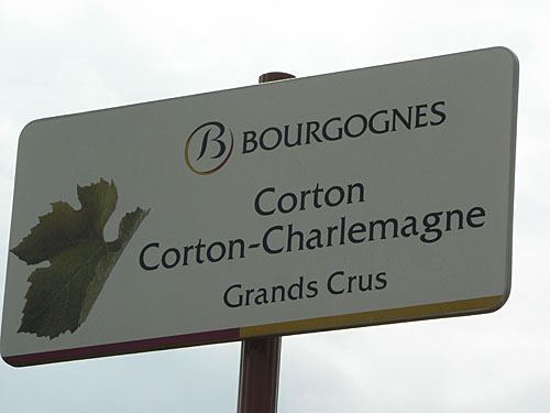grands crus corton charlemagne.jpg