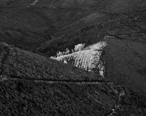 paisaje en sombra by eMecHe