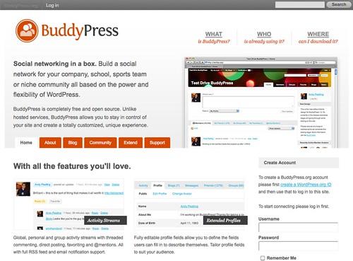 BuddyPress.org_1314260671264