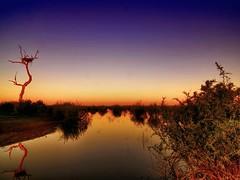 Billabong (PhotoArt Images) Tags: sunset australia outback aussie billabong 100commentgroup flickrstruereflection1 flickrstruereflection2 photoartimages