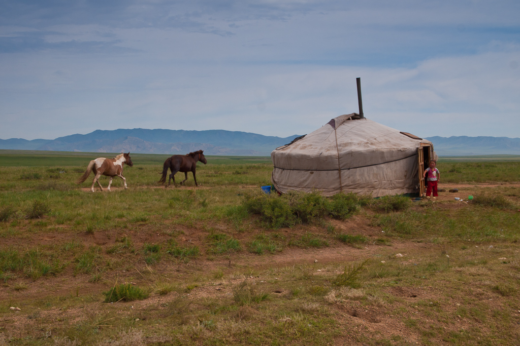 horses-ger-camp-mongolia