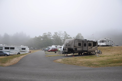 Salt Creek Campground, Olympic National Park