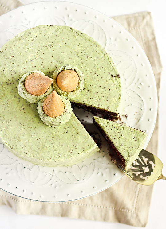 mint_choc_chip_cake-6