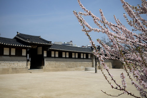 Wanderlust Wednesdays: Changdeok Palace (Seoul, Korea)