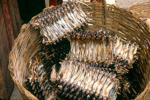 Dried fish, photo by WorldFish, 2005