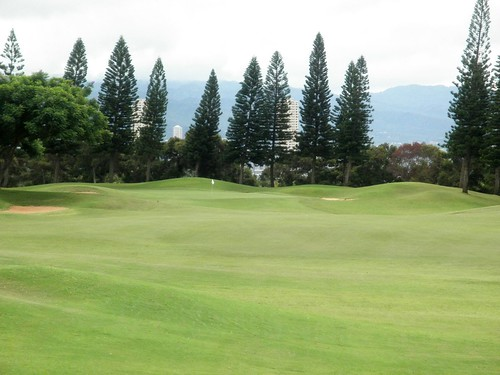 WAIKELE COUNTRY CLUB 031b
