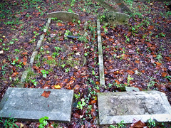 Double Bed Graves (Harpo42) Tags: ohio abandoned broken cemetery rain lost sad beds decay 1800s double graves creepy forgotten oh sidebyside woos ironton