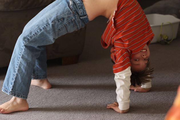contortionist-2