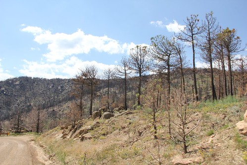 Fourmile Canyon Burn