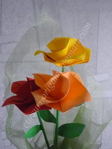 Trandafiri by Bogdan Petcu