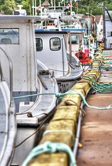 Boats and ropes - North Rustico harbour, PEI (Derek Mellon) Tags: rustico harbour princeedwardisland ropes fishingboats pei