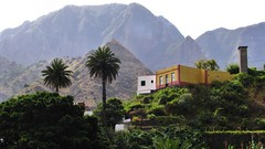 Exotic Heights (Liamfm .) Tags: tropical canaryislands gomera lagomera