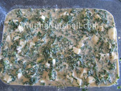 Spinach cheese appetizer