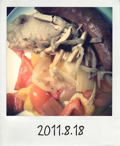 20110818_Photo Diet_2