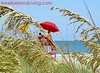 Golden Sea Oats, Lifeguards in Fernandina Beach