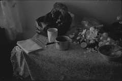 (Andrey Timofeev) Tags: blackandwhite bw stilllife film kitchen monochrome rollei pencil 35mm notebook plate retro plasticbag mug pan tablecloth eggshell      prakticabcc 35 rolleiretro400      pentaconprakticar50mmf18