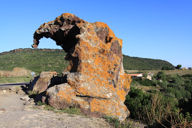Roccia dell'Elefante - the Elephant Rock, one of the Mother Nature's weirder creations...