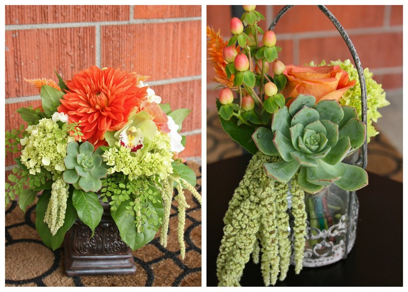 Search results for Kevin & Taylor Flower Pics1